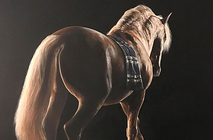 The Arabian horse is distinguished by its superior beauty
