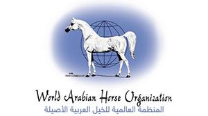 المنظمة العالمية للجواد العربي